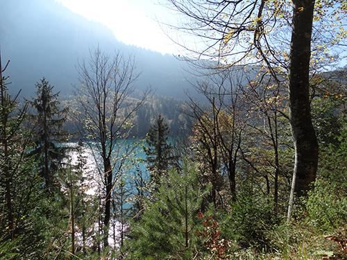 Alpsee Fürstenweg