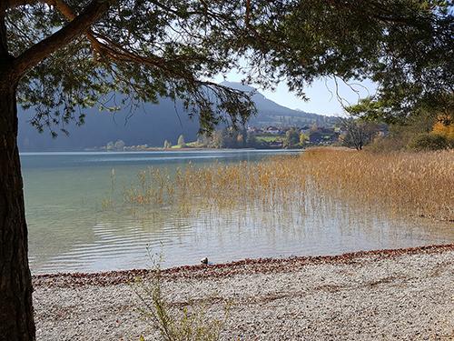 Weißensee