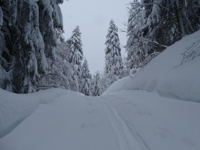 Weg zur Bregenzer Hütte