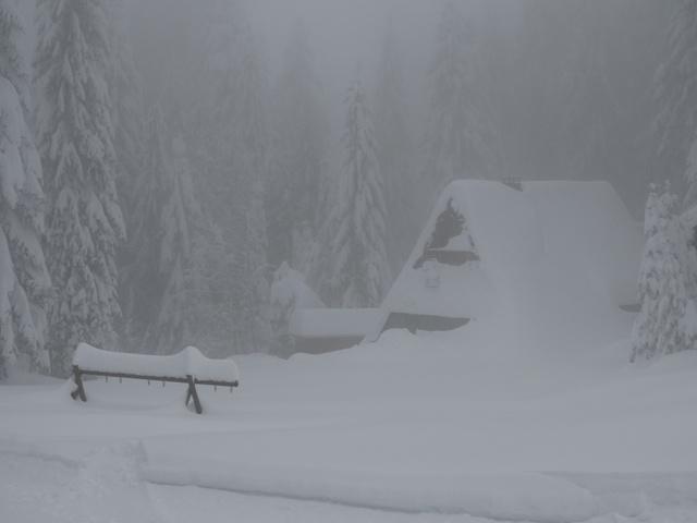 Beinahe vorbei gelaufen - so starker Schneefall