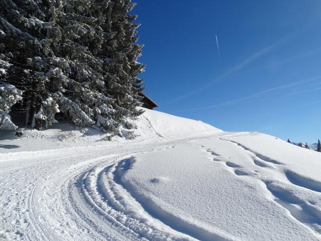 Winterwandern zur Mittelalpe