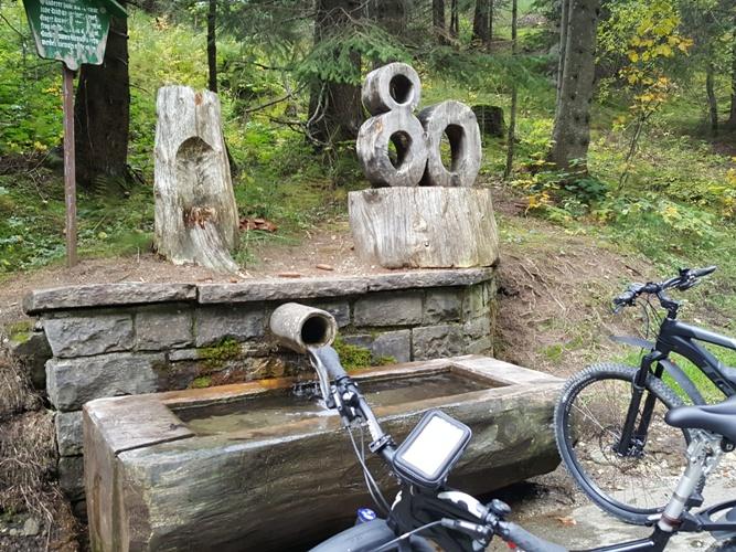 Brunnen bei der Abfahrt nach Junghholz