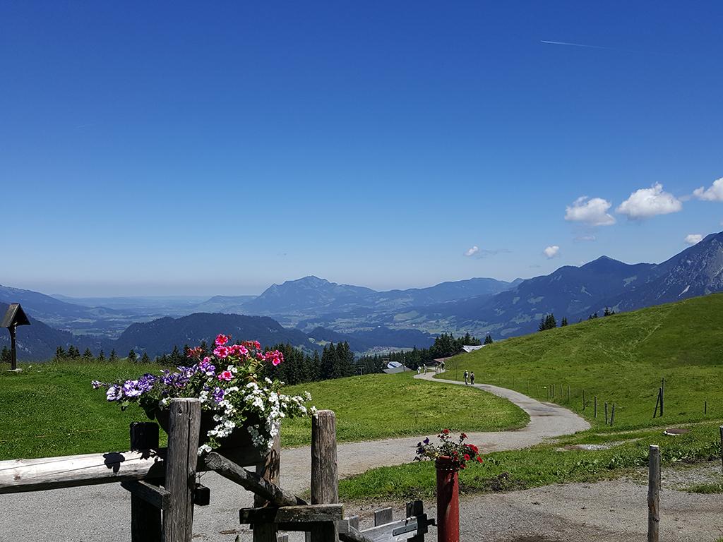 Hinunter zur Bergstation am Söllereck