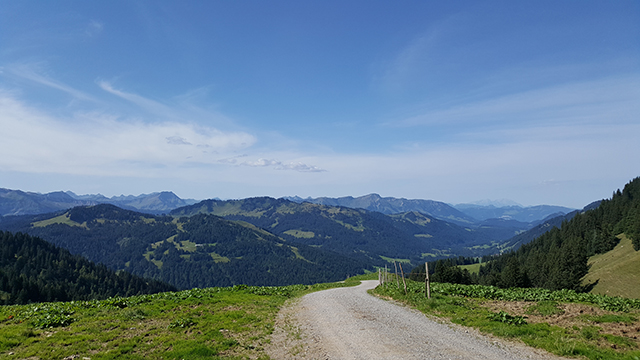 Blick auf den Bregenzerwald