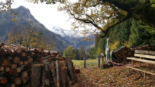 Auf der Schwarzenberghütte - Ferienwohnungen Plangger