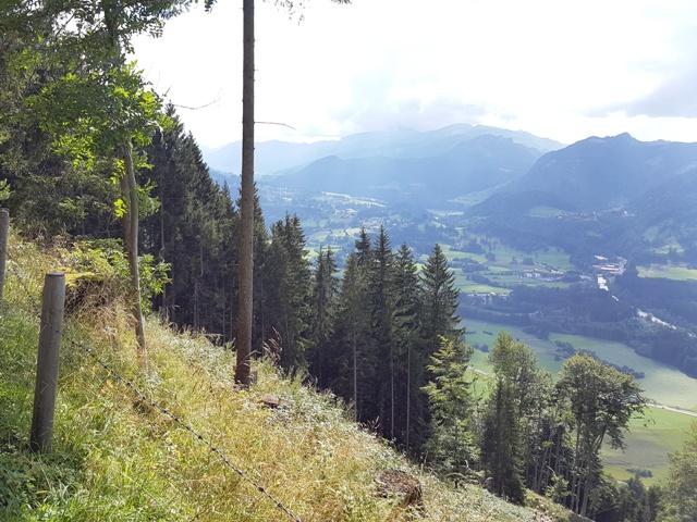 Blick Richtung Langenwang und Söllereck