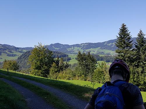 Weg Richtung Schetteregg