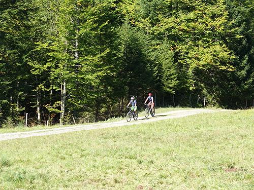 Im Anstieg nach Schönenbach