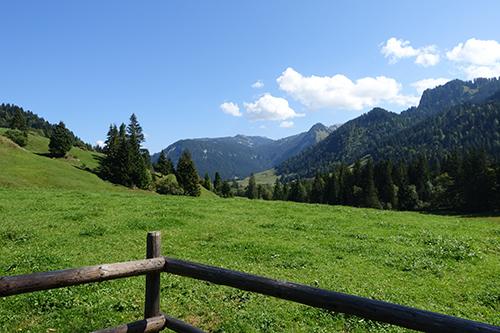 Blick zurück auf das Almgebiet Schönenbach