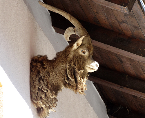 einer der Böcke unter dem Dach der Fallmühle