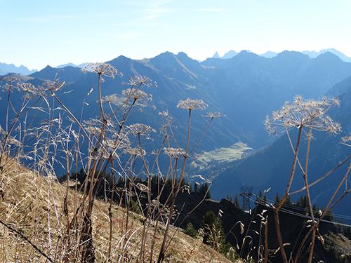 Blick vom Gipfel hinunter ins Wildental